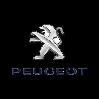 Peugeot reparatie